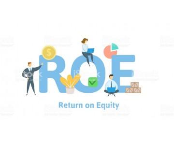 """Nhìn ROE đầu tư: """"Đường dài mới biết ngựa hay"""
