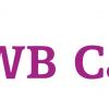 CỤC SỞ HỮU TRÍ TUỆ CHẤP THUẬN THƯƠNG HIỆU WB CAPITAL